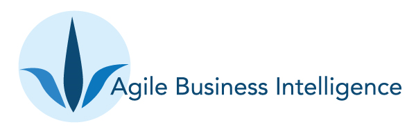 Agile BI